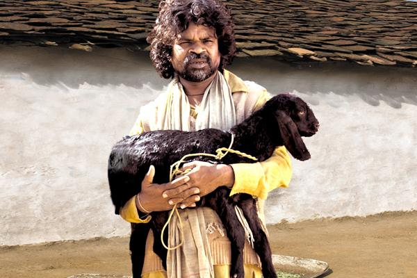 Oscar-IndiaSubmissions-2010-PeepliLive