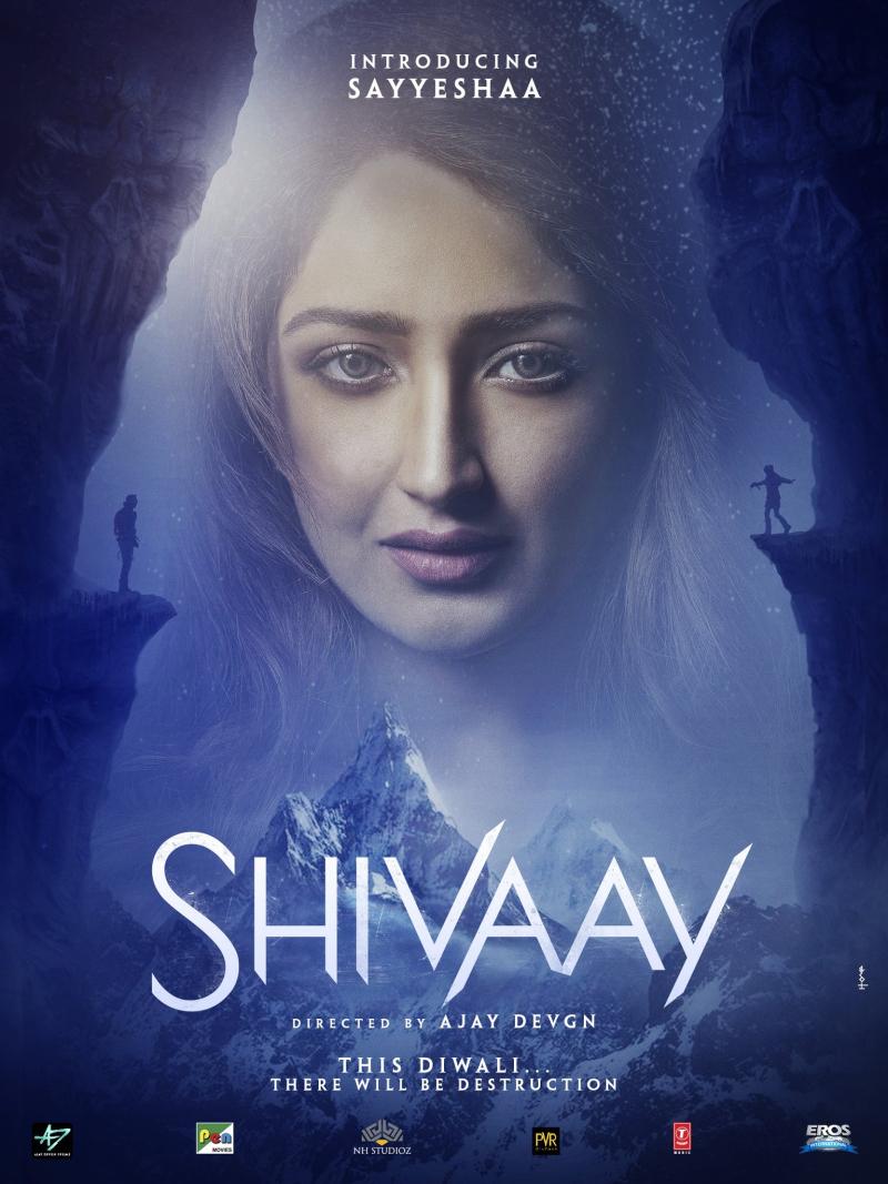 Shivaay-Poster-SayeshaSaigal
